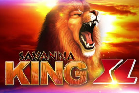 Savanna king XL